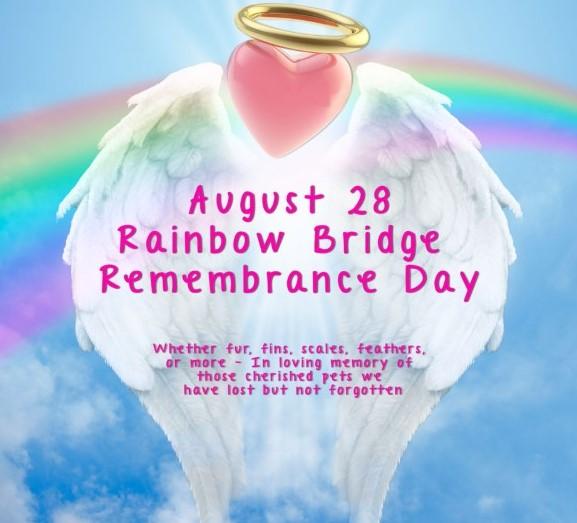 happy national rainbow bridge remembrance day wishes