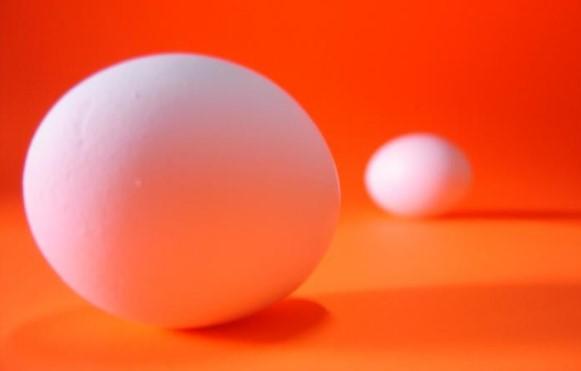 World Egg Day 2019